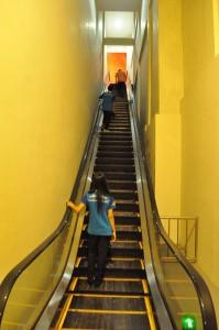 THE BAGONG ADVENTURE MUSEUM TUBUH