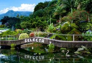 Selecta Batu Malang