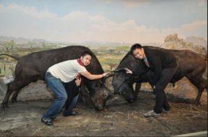 hewan eksotik di Batu Secret Zoo Jatim Park 2