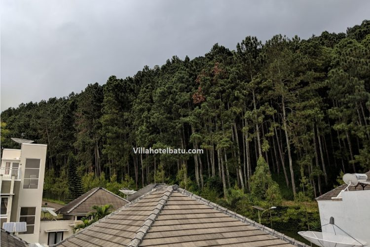 Villa M54 Batu