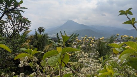 Villa Nuansa Alam The Legend Batu